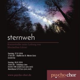Konzert mit dem Psychochor Jena